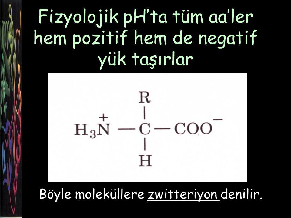 Fizyolojik pH'ta tüm aa'ler hem pozitif hem de negatif yük taşırlar