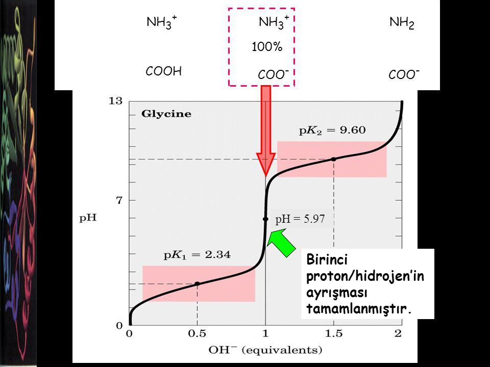 Birinci proton/hidrojen'in ayrışması tamamlanmıştır.