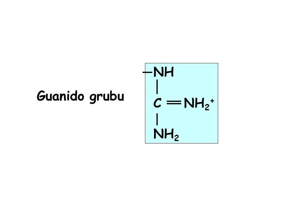 NH C NH2+ NH2 Guanido grubu