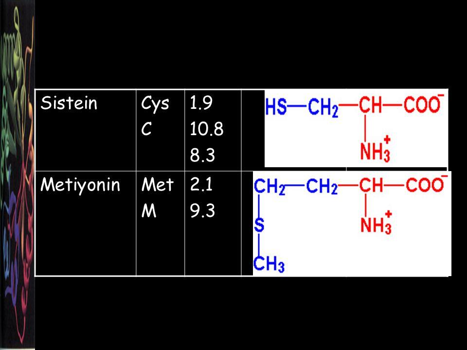 Sistein Cys C 1.9 10.8 8.3 Metiyonin Met M 2.1 9.3