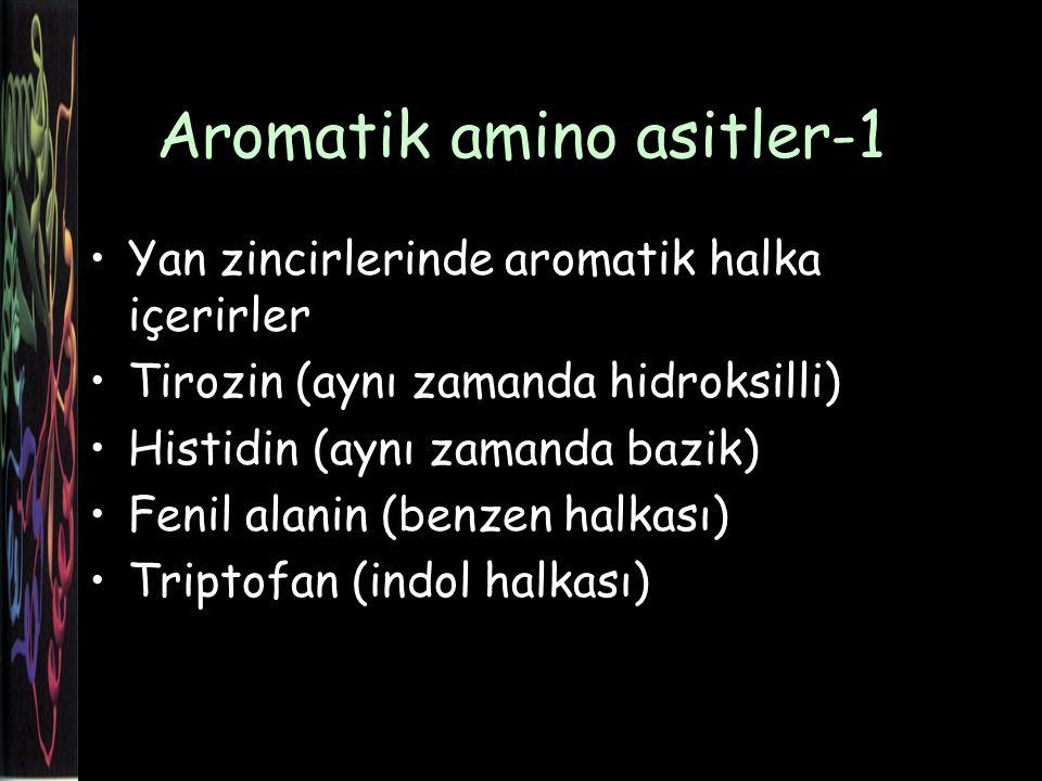 Aromatik amino asitler-1