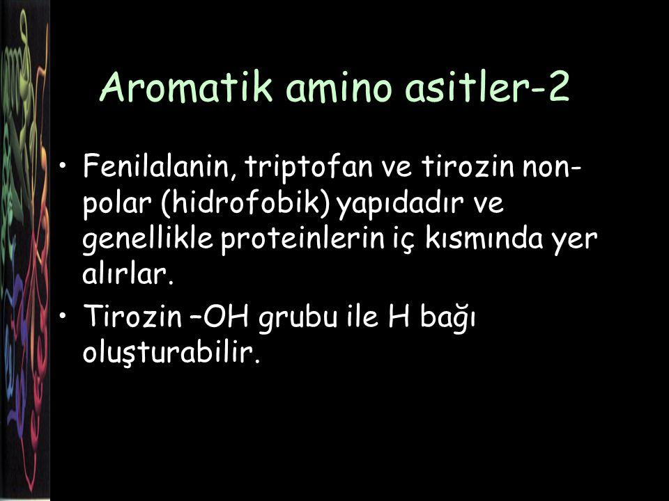 Aromatik amino asitler-2