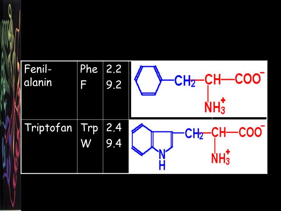 Fenil-alanin Phe F 2.2 9.2 Triptofan Trp W 2.4 9.4