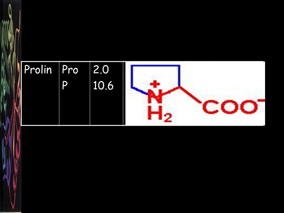 Prolin Pro P 2.0 10.6