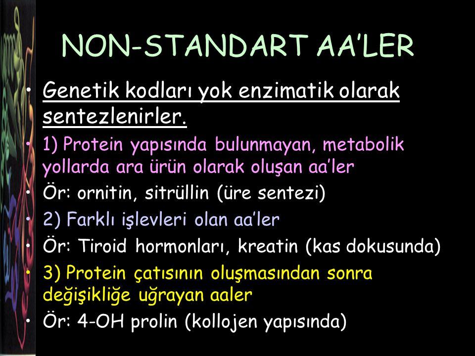 NON-STANDART AA'LER Genetik kodları yok enzimatik olarak sentezlenirler.