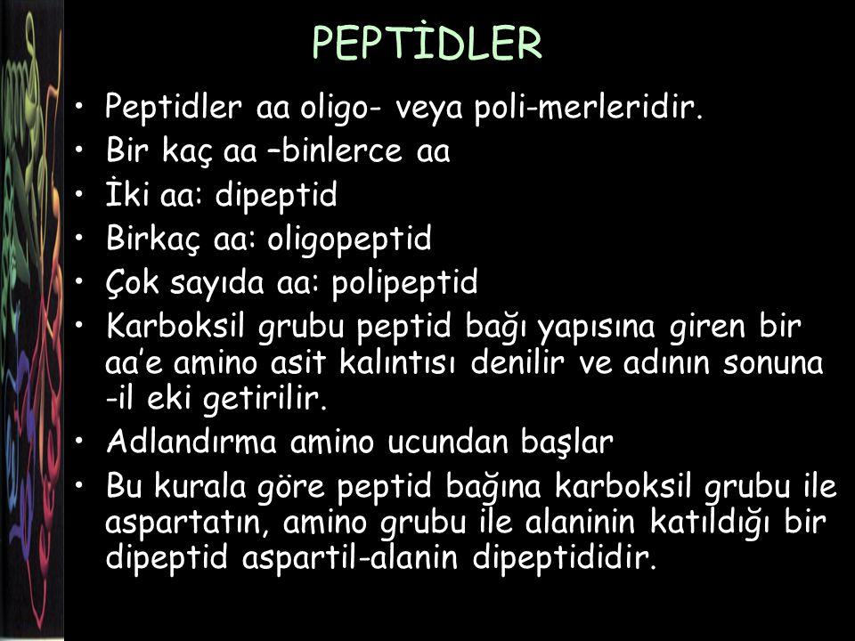 PEPTİDLER Peptidler aa oligo- veya poli-merleridir.