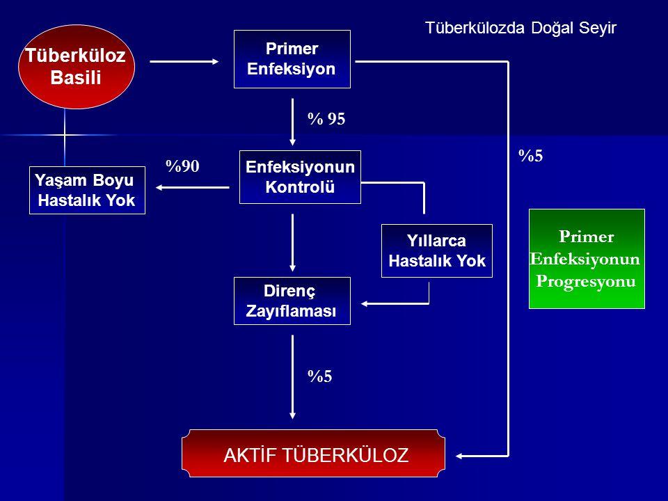 Tüberküloz Basili % 95 %5 %90 Primer Enfeksiyonun Progresyonu %5