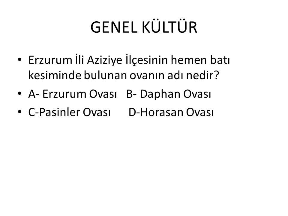 GENEL KÜLTÜR Erzurum İli Aziziye İlçesinin hemen batı kesiminde bulunan ovanın adı nedir A- Erzurum Ovası B- Daphan Ovası.