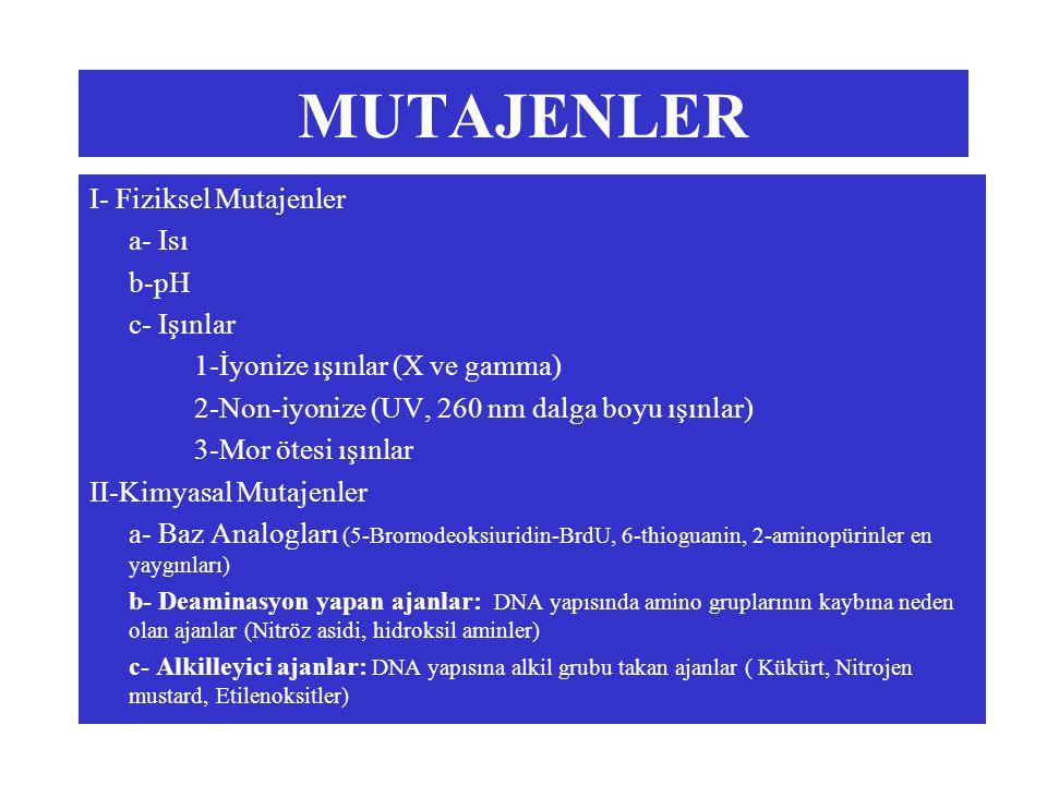MUTAJENLER I- Fiziksel Mutajenler a- Isı b-pH c- Işınlar