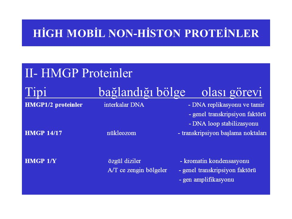 HİGH MOBİL NON-HİSTON PROTEİNLER