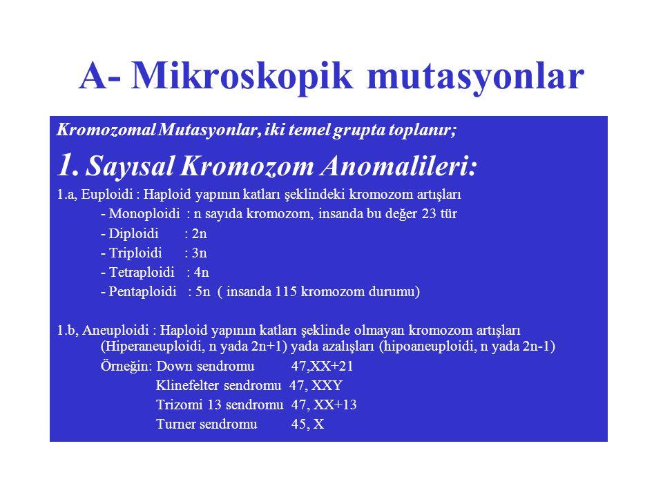 A- Mikroskopik mutasyonlar