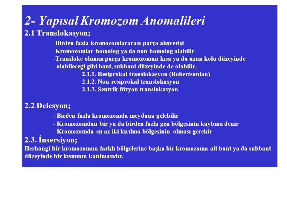 2- Yapısal Kromozom Anomalileri 2. 1 Translokasyon;