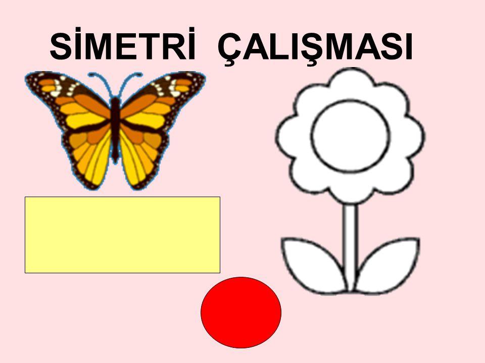 SİMETRİ ÇALIŞMASI