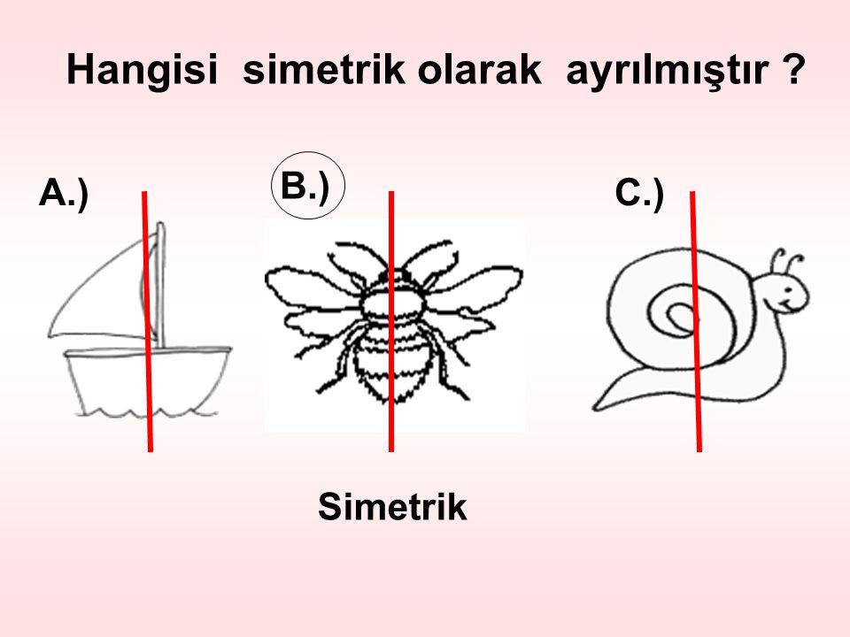 Hangisi simetrik olarak ayrılmıştır