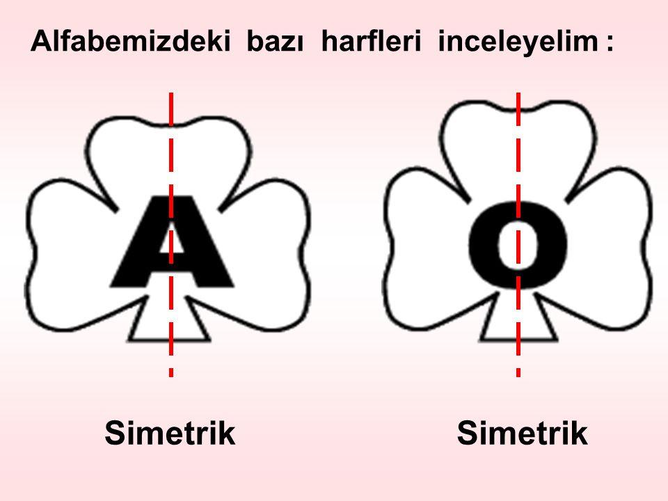 Alfabemizdeki bazı harfleri inceleyelim :