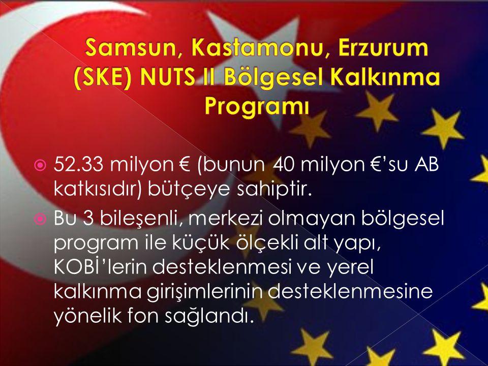 Samsun, Kastamonu, Erzurum (SKE) NUTS II Bölgesel Kalkınma Programı
