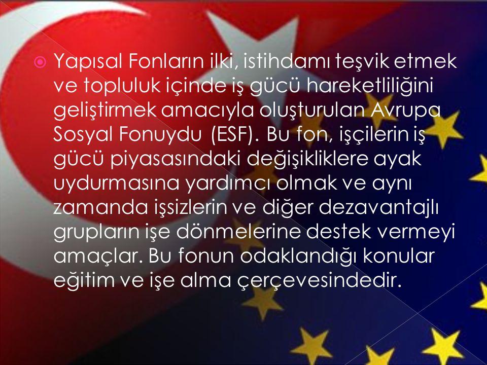 Yapısal Fonların ilki, istihdamı teşvik etmek ve topluluk içinde iş gücü hareketliliğini geliştirmek amacıyla oluşturulan Avrupa Sosyal Fonuydu (ESF).