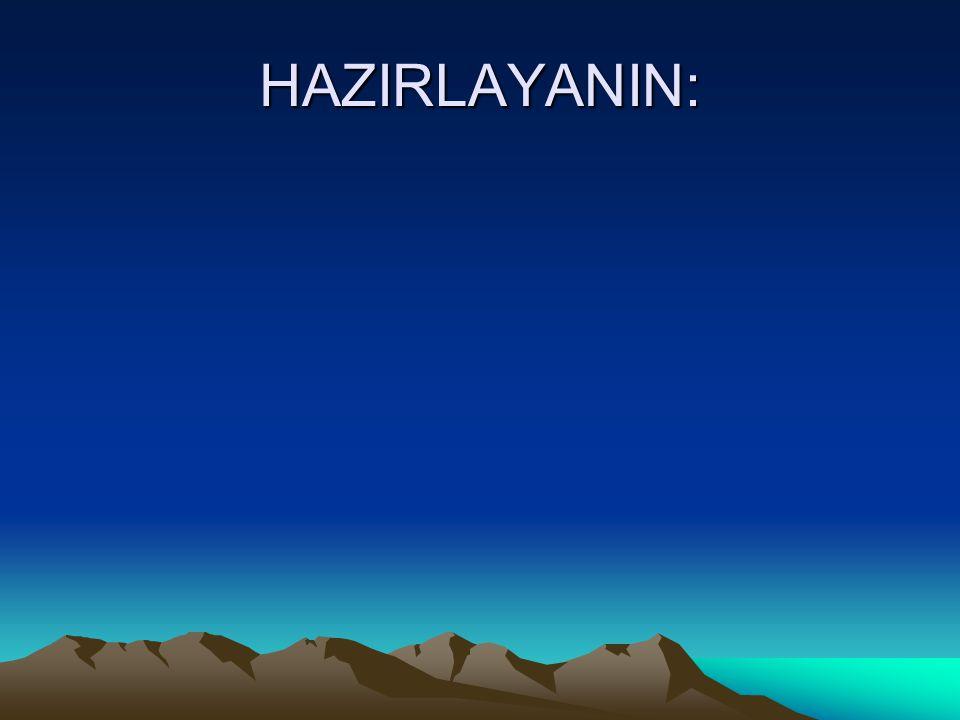 HAZIRLAYANIN: