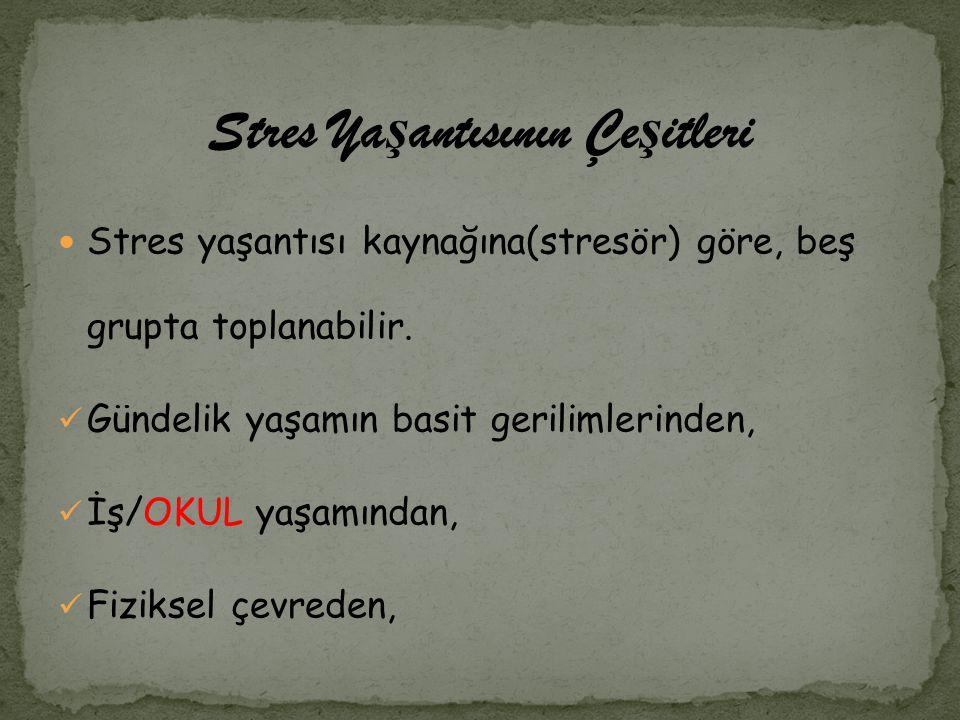 Stres Yaşantısının Çeşitleri