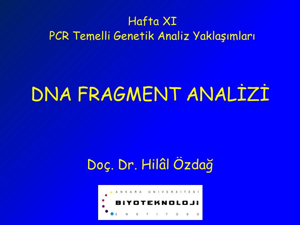 PCR Temelli Genetik Analiz Yaklaşımları