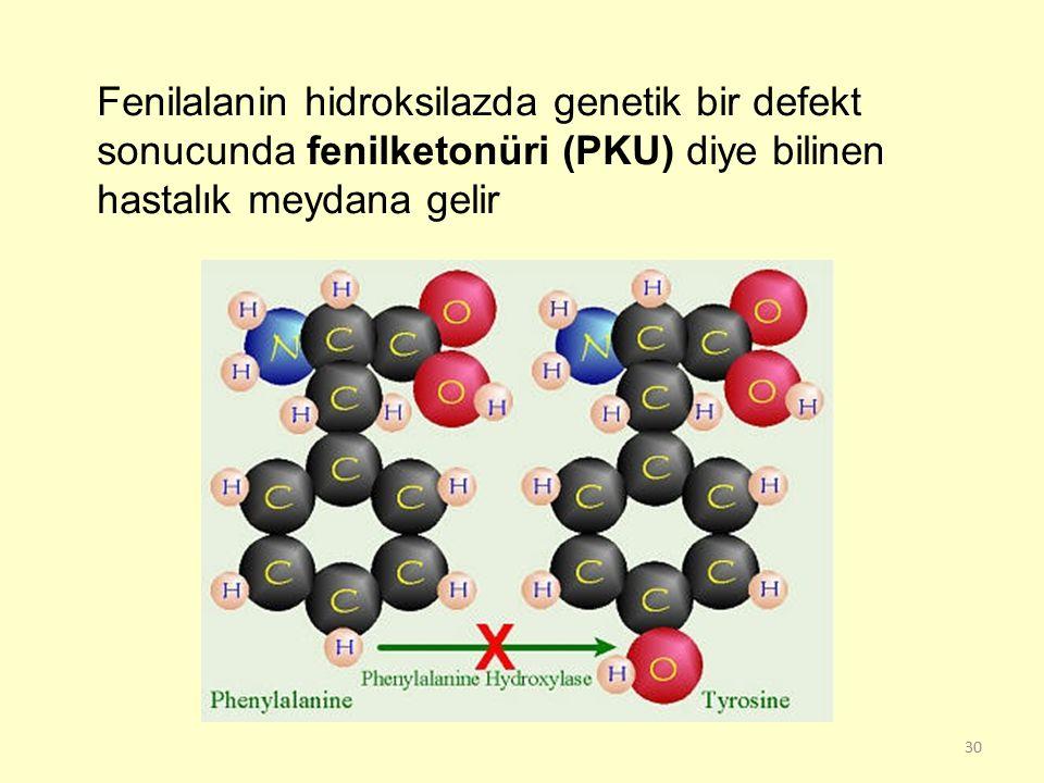 Fenilalanin hidroksilazda genetik bir defekt sonucunda fenilketonüri (PKU) diye bilinen hastalık meydana gelir