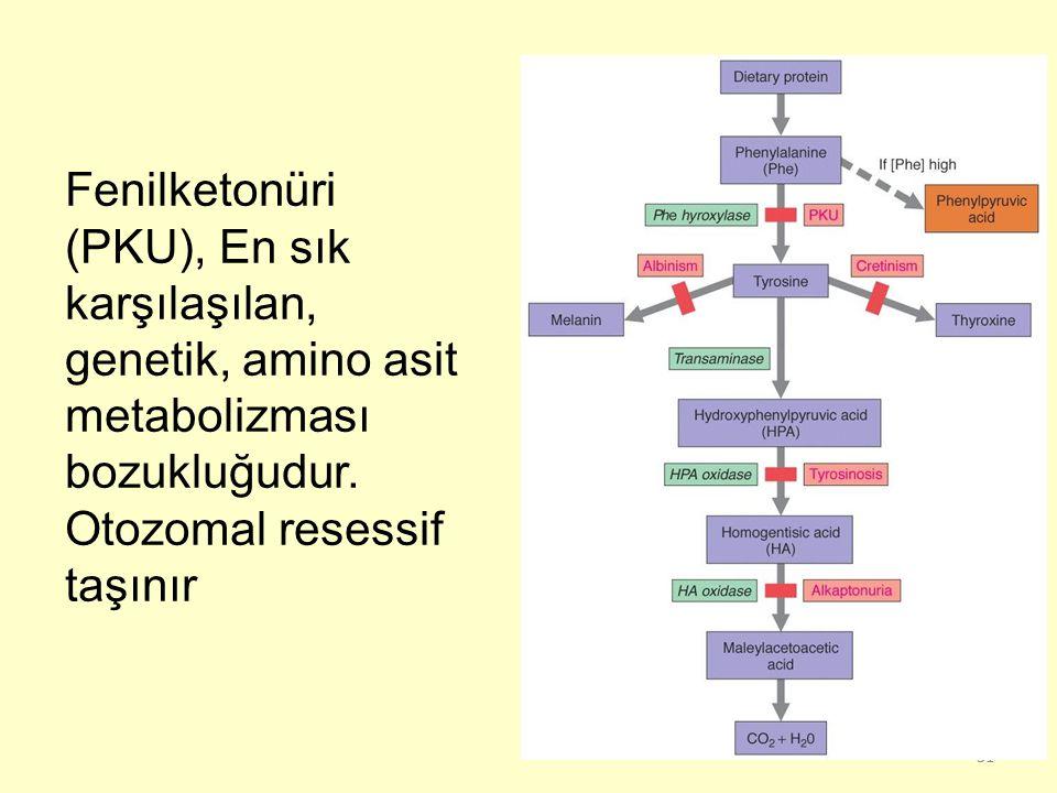 Fenilketonüri (PKU), En sık karşılaşılan, genetik, amino asit metabolizması bozukluğudur.