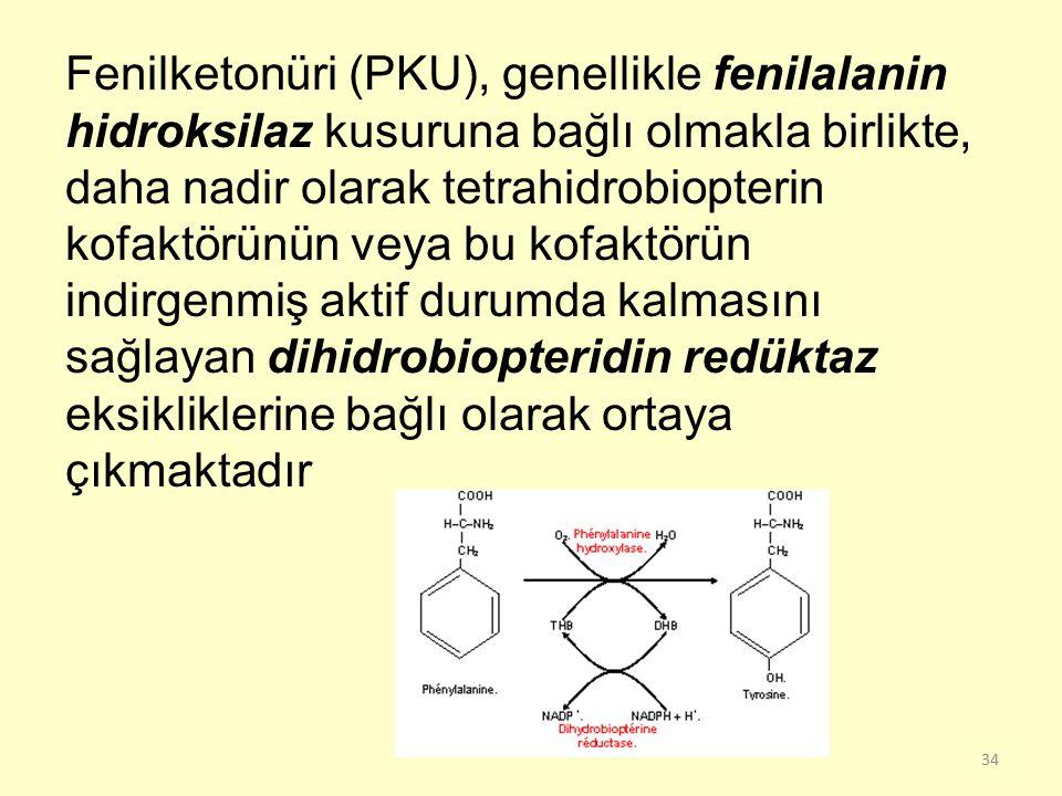 Fenilketonüri (PKU), genellikle fenilalanin hidroksilaz kusuruna bağlı olmakla birlikte, daha nadir olarak tetrahidrobiopterin kofaktörünün veya bu kofaktörün indirgenmiş aktif durumda kalmasını sağlayan dihidrobiopteridin redüktaz eksikliklerine bağlı olarak ortaya çıkmaktadır