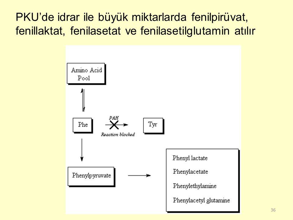 PKU'de idrar ile büyük miktarlarda fenilpirüvat, fenillaktat, fenilasetat ve fenilasetilglutamin atılır