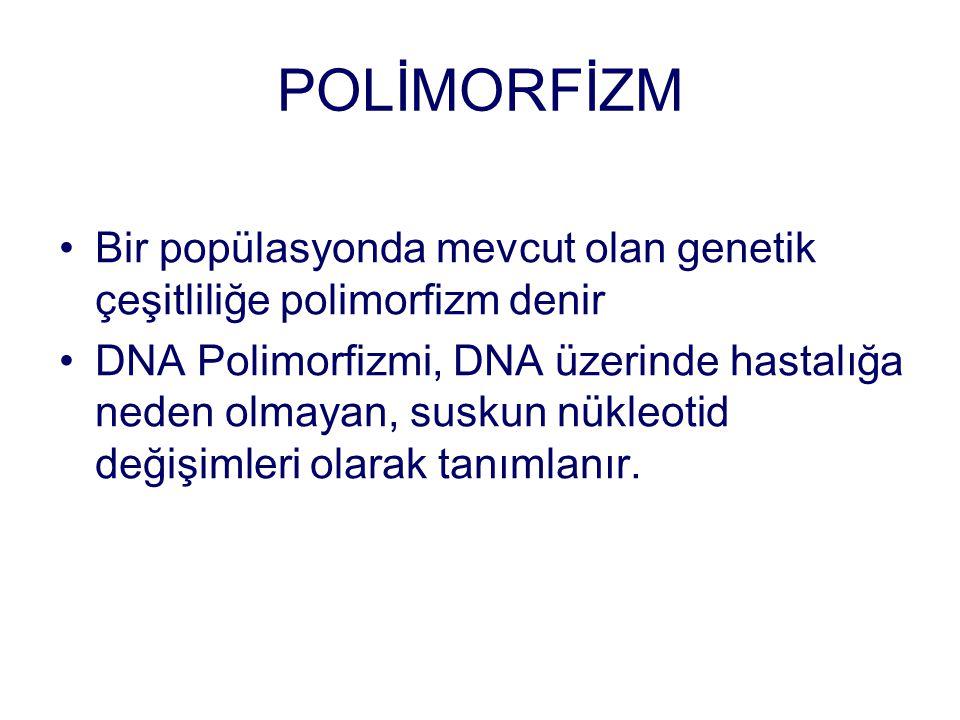 POLİMORFİZM Bir popülasyonda mevcut olan genetik çeşitliliğe polimorfizm denir.
