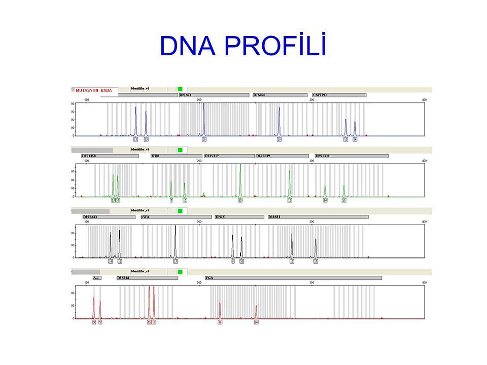 DNA PROFİLİ