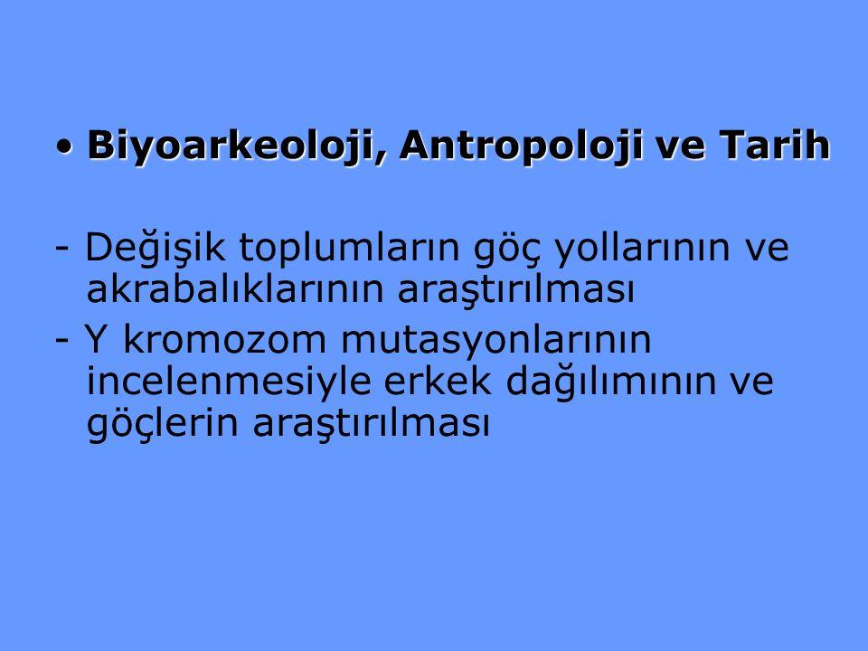 Biyoarkeoloji, Antropoloji ve Tarih