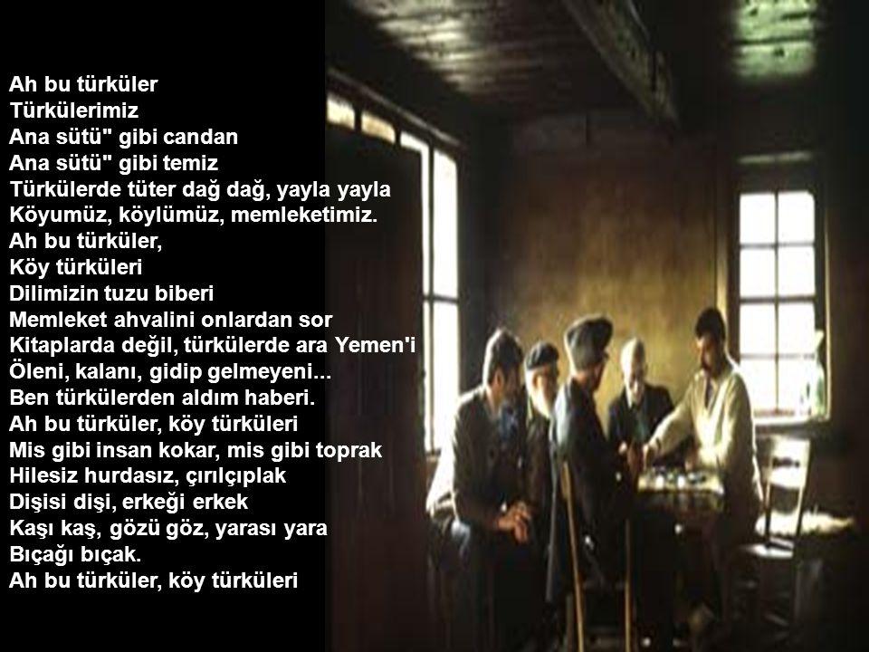 Ah bu türküler Türkülerimiz. Ana sütü gibi candan. Ana sütü gibi temiz. Türkülerde tüter dağ dağ, yayla yayla.