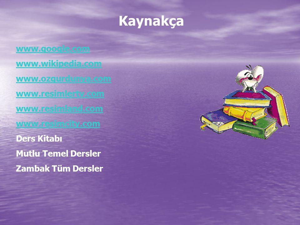Kaynakça www.google.com www.wikipedia.com www.ozgurdunya.com