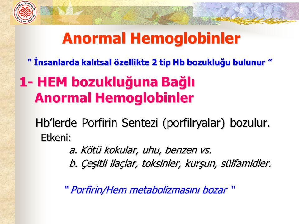 Porfirin/Hem metabolizmasını bozar