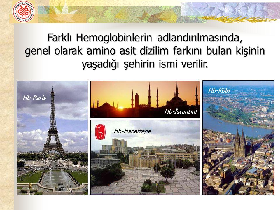 Farklı Hemoglobinlerin adlandırılmasında, genel olarak amino asit dizilim farkını bulan kişinin yaşadığı şehirin ismi verilir.