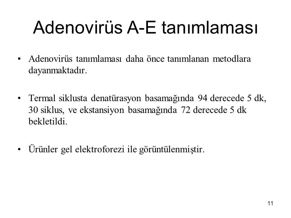 Adenovirüs A-E tanımlaması