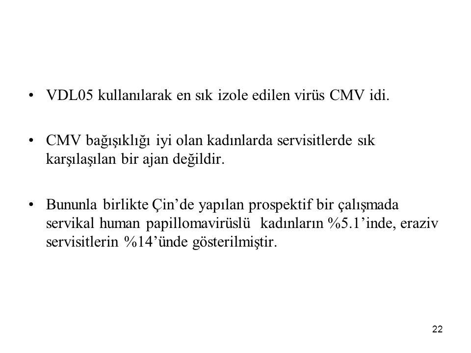 VDL05 kullanılarak en sık izole edilen virüs CMV idi.
