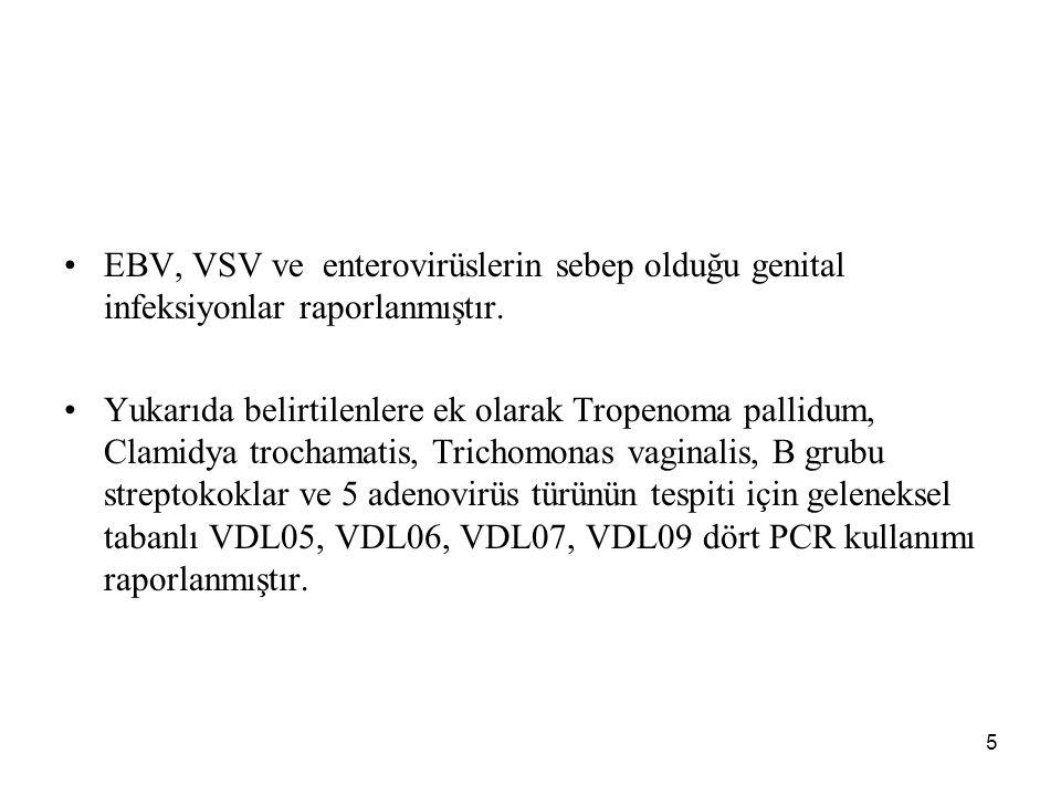 EBV, VSV ve enterovirüslerin sebep olduğu genital infeksiyonlar raporlanmıştır.