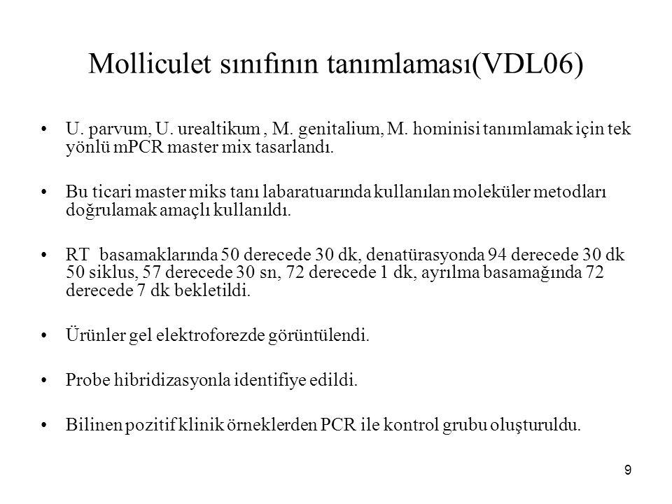 Molliculet sınıfının tanımlaması(VDL06)