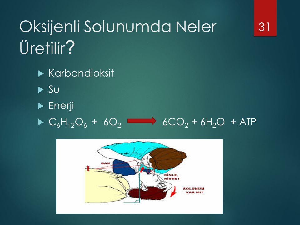 Oksijenli Solunumda Neler Üretilir