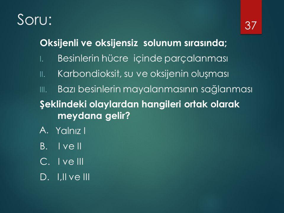 Soru: Oksijenli ve oksijensiz solunum sırasında;