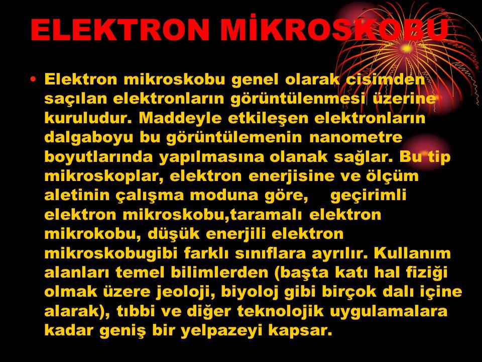 ELEKTRON MİKROSKOBU