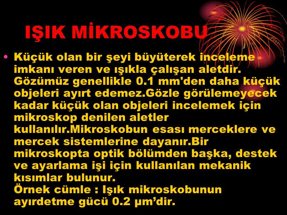 IŞIK MİKROSKOBU