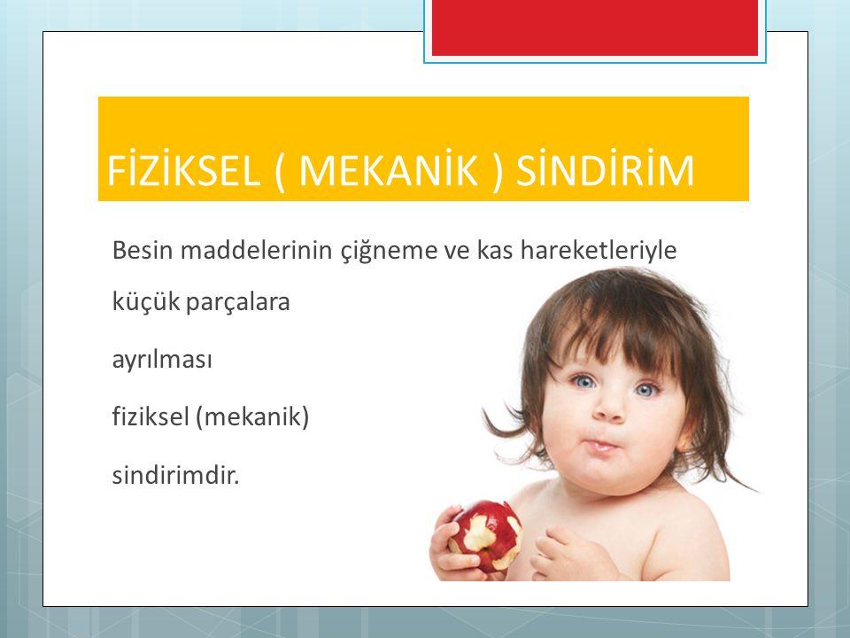 FİZİKSEL ( MEKANİK ) SİNDİRİM