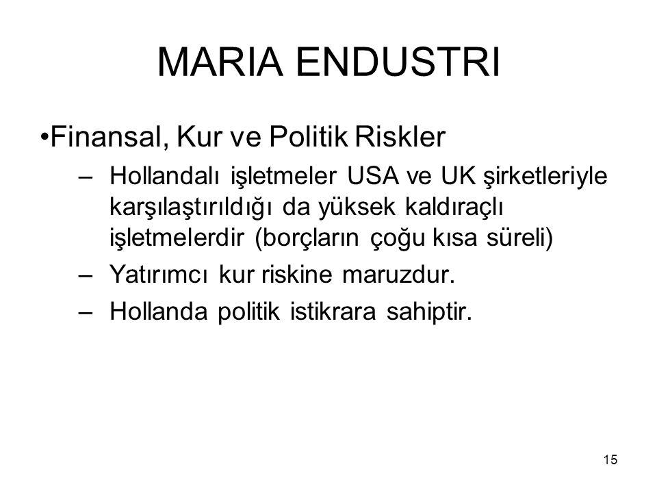 MARIA ENDUSTRI Finansal, Kur ve Politik Riskler