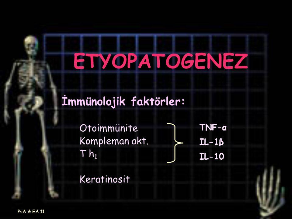 ETYOPATOGENEZ İmmünolojik faktörler: Otoimmünite Kompleman akt. T h1