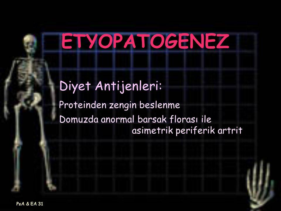 ETYOPATOGENEZ Diyet Antijenleri: Proteinden zengin beslenme