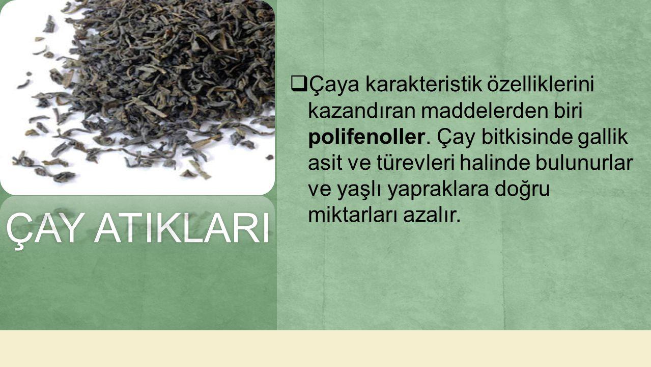 Çaya karakteristik özelliklerini kazandıran maddelerden biri polifenoller. Çay bitkisinde gallik asit ve türevleri halinde bulunurlar ve yaşlı yapraklara doğru miktarları azalır.