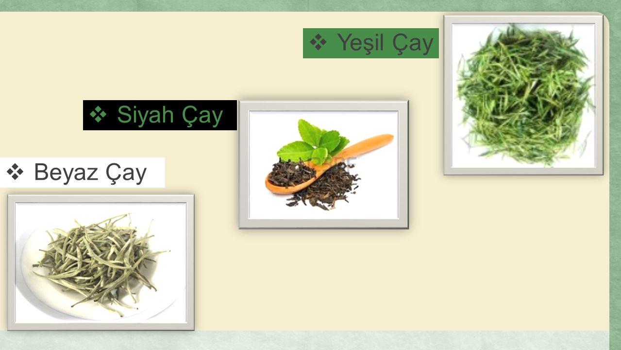 Yeşil Çay Siyah Çay Beyaz Çay
