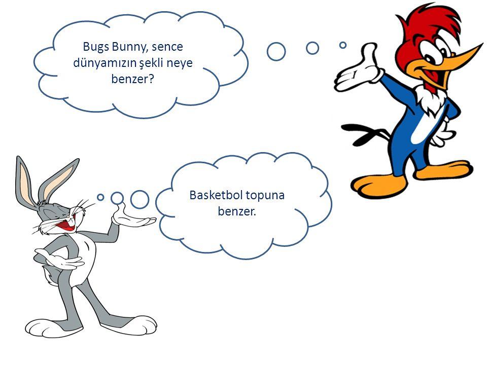 Bugs Bunny, sence dünyamızın şekli neye benzer